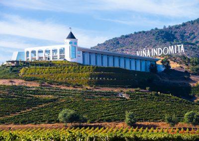 Indomita_winery